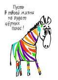 zebra_life